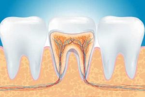 endodonzia-frosinone